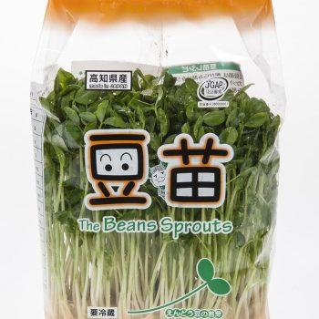 S様 生鮮野菜の撮影をいたしました。